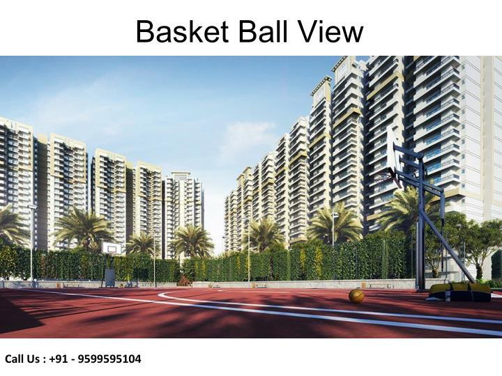 Basket Ball View