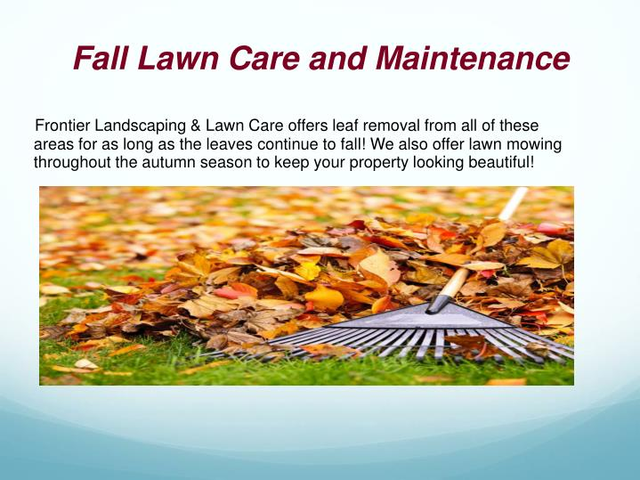 Fall Lawn Care and Maintenance