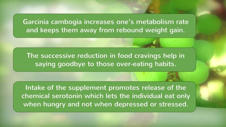 Garcinia cambogia increases one's metabolism rate and keeps them away from rebound weight gain.