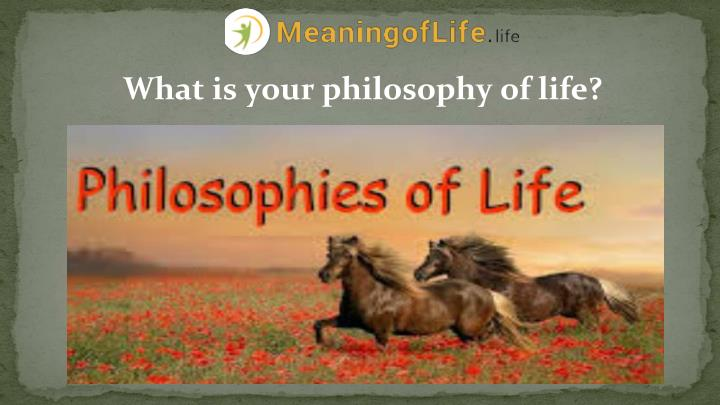 What is your philosophy of life?