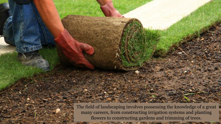 The field of landscaping involves possessing the knowledge of a great many careers, from constructing irrigation systems and planting flowers to constructing gardens and trimming of trees.
