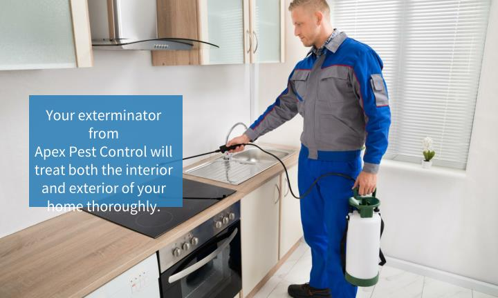 Your exterminator from
