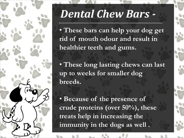 Dental Chew Bars -