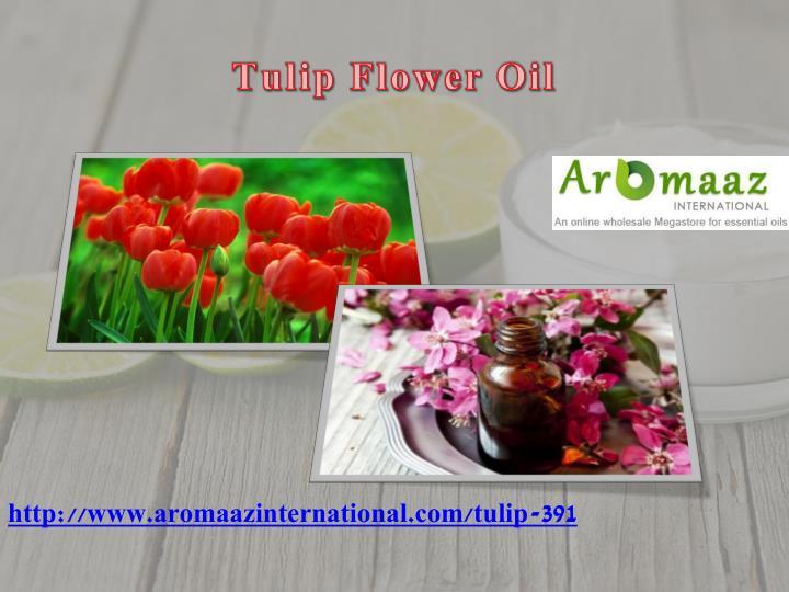 Tulip Flower Oil