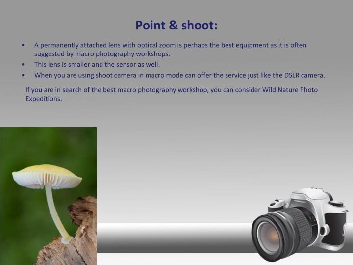 Point & shoot: