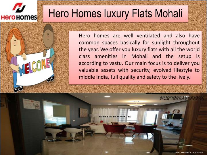 Hero homes luxury flats mohali