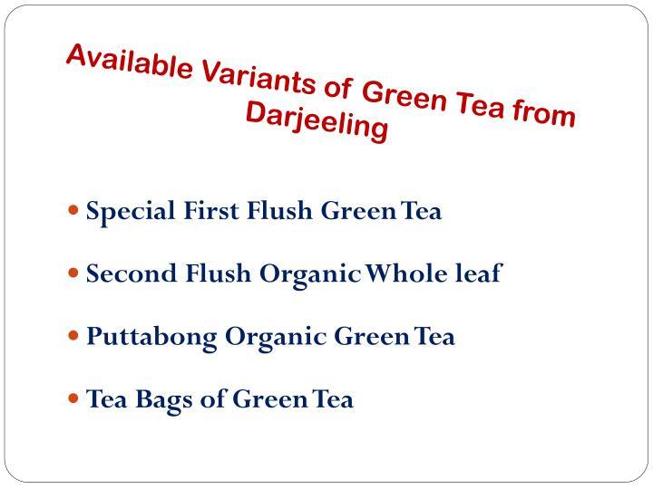 Available variants of green tea from darjeeling