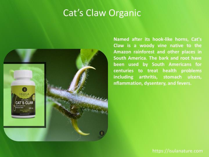 Cat's Claw Organic