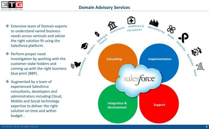 Domain Advisory Services