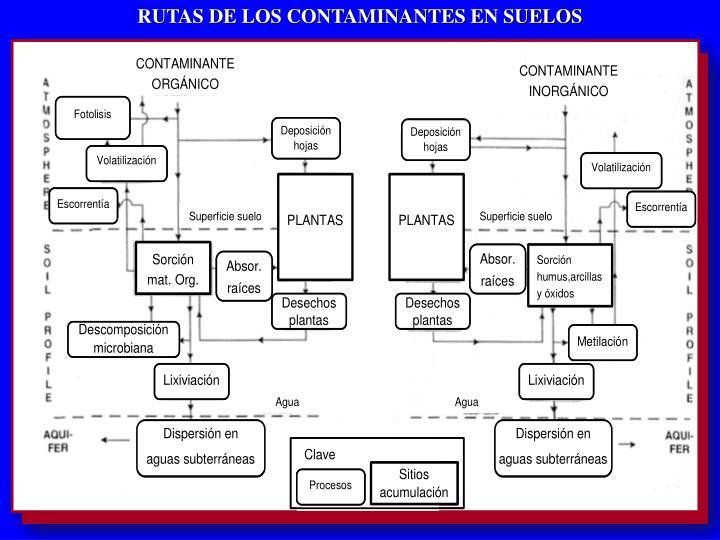 RUTAS DE LOS CONTAMINANTES EN SUELOS