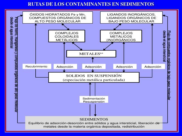 RUTAS DE LOS CONTAMINANTES EN SEDIMENTOS