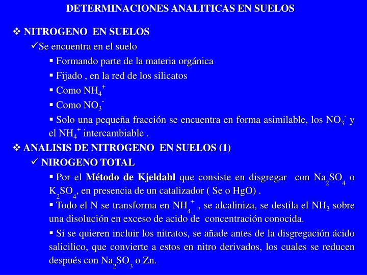 DETERMINACIONES ANALITICAS EN SUELOS