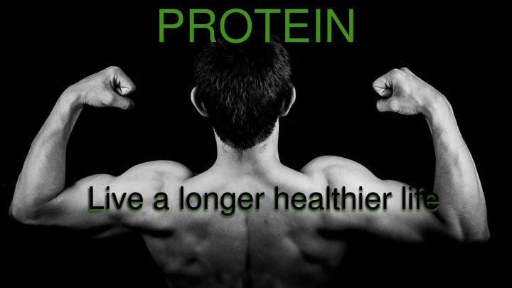 Meatless protein