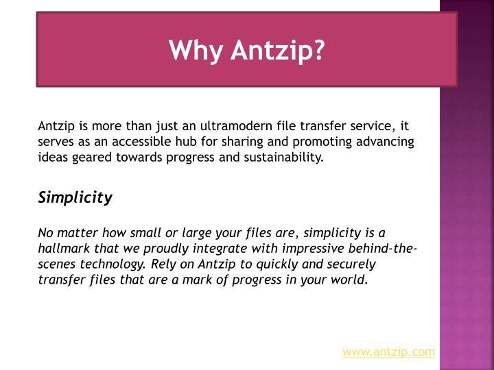 Why Antzip?