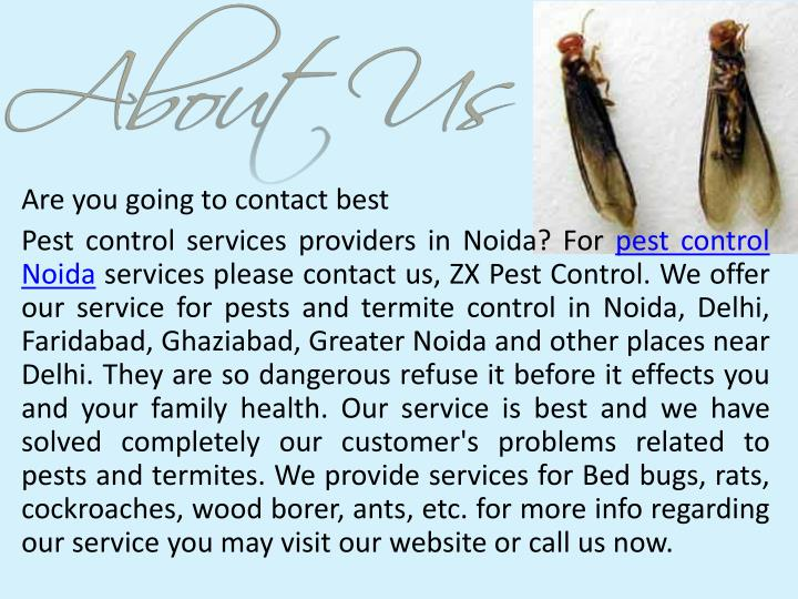 Are you going to contact best