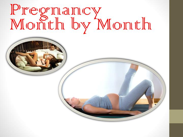 pregnancy month by month n.