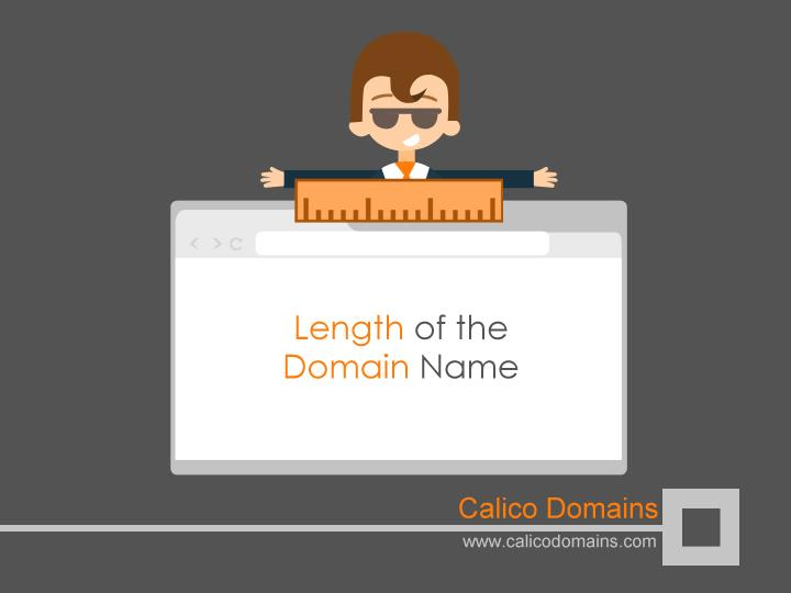 Length of the Domain Name
