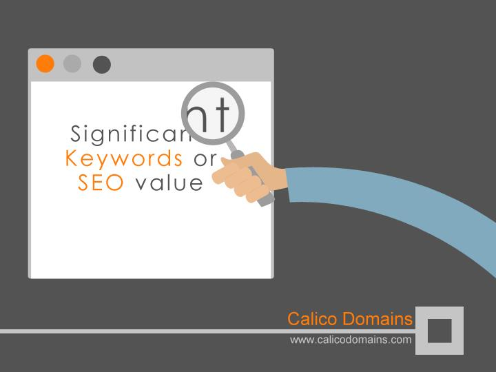 Significant Keywords or SEO value