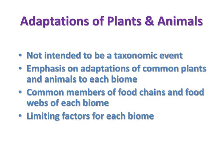 Adaptations of Plants & Animals