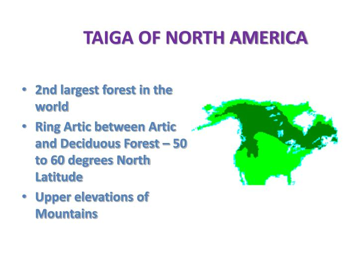 TAIGA OF NORTH AMERICA