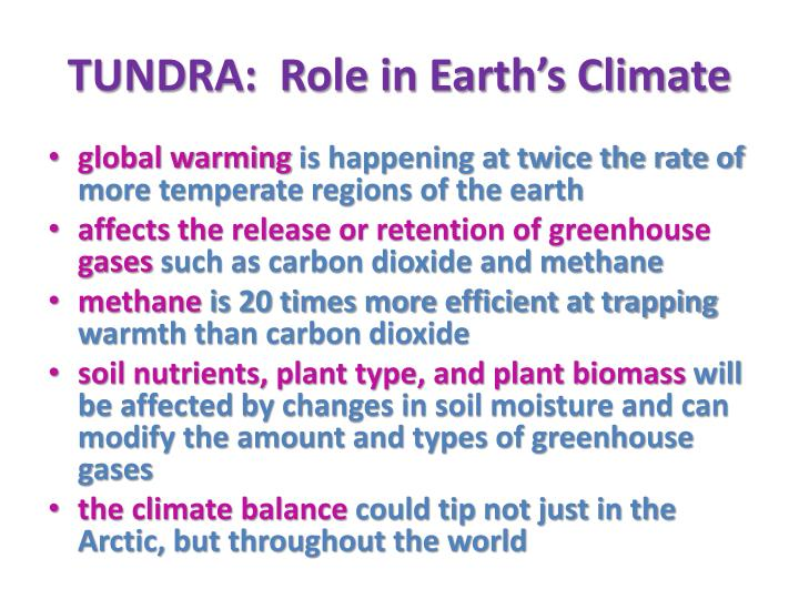 TUNDRA:  Role in Earth's Climate