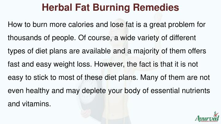 Herbal Fat Burning Remedies