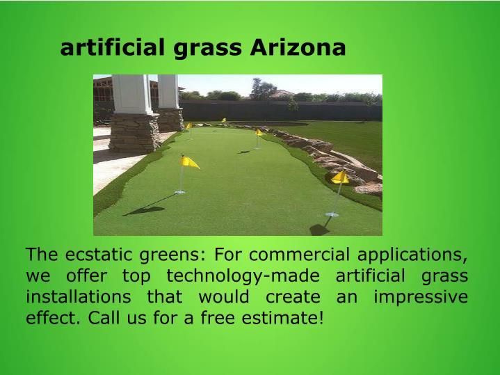 Artificial grass Arizona