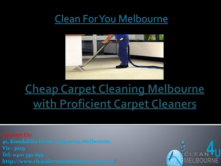 clean for you melbourne n.