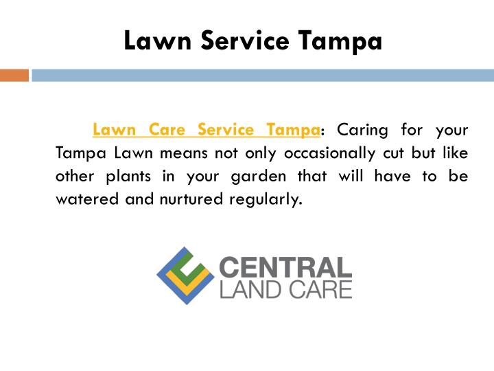 Lawn Service Tampa
