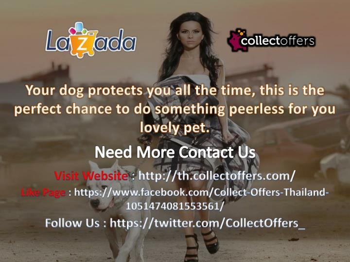 Your dog protects you all the time, this is the perfect chance to do something peerless for you lovely pet.