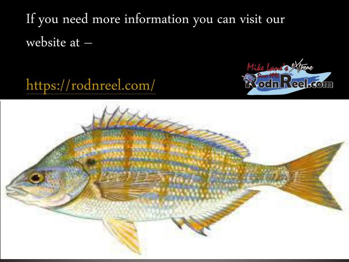 If you need more information you can visit our website at –
