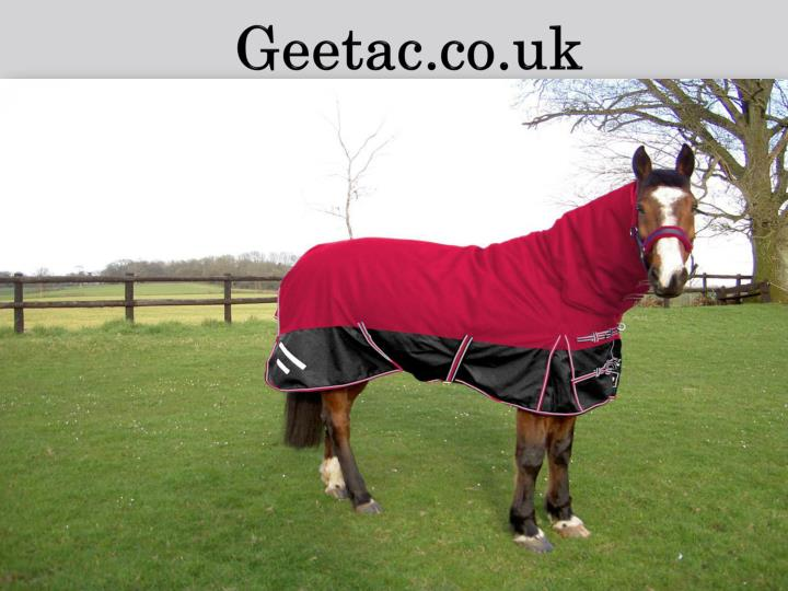 Cheap exercise hi viz horse rugs