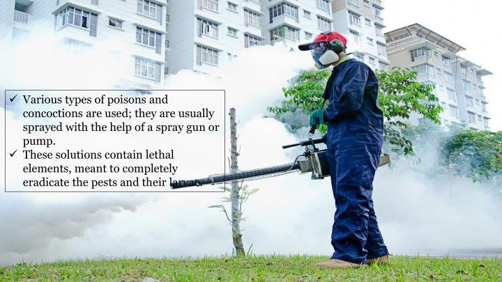 Various types of poisons and concoctions are used; they are usually sprayed with the help of a spray gun or pump.