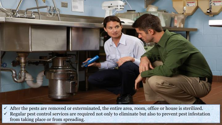 After the pests are removed or exterminated, the entire area, room, office or house is sterilized.