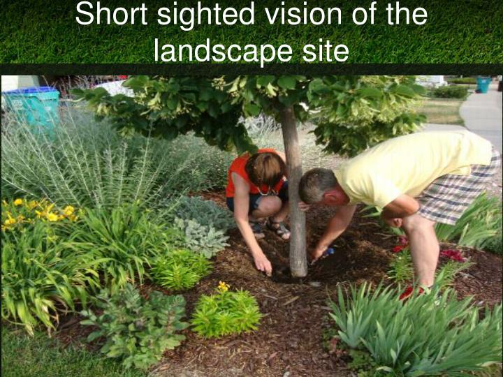 Short sighted vision of the landscape site