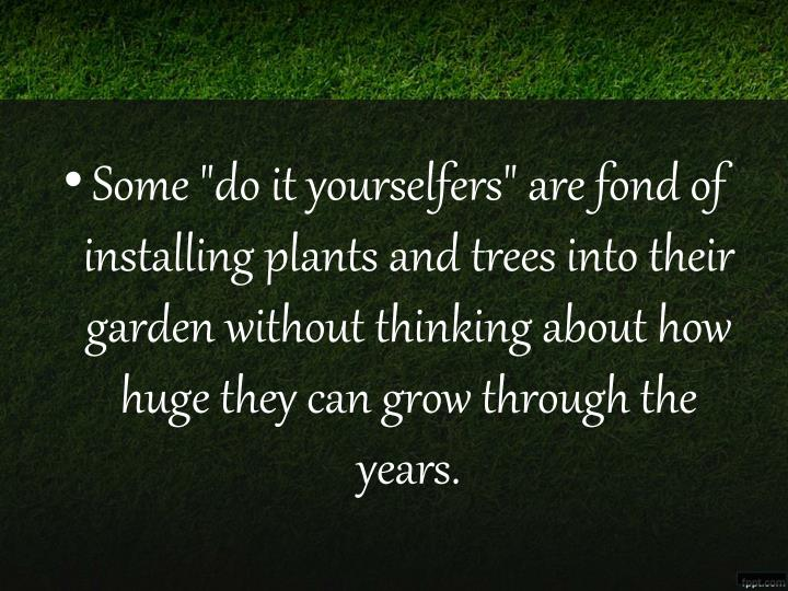 """Some """"do it yourselfers"""" are fond of installing plants and trees into their garden without thinking about how huge they can grow through the years."""