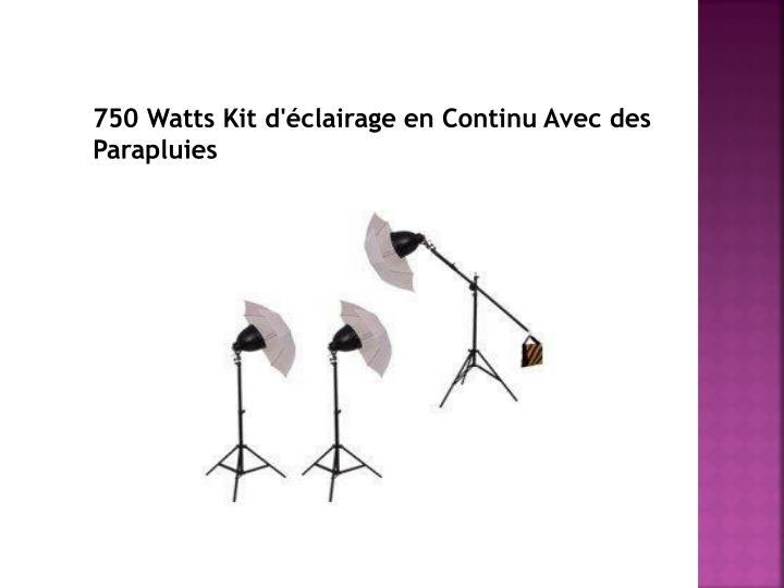 750 Watts Kit d'éclairage en Continu Avec des Parapluies