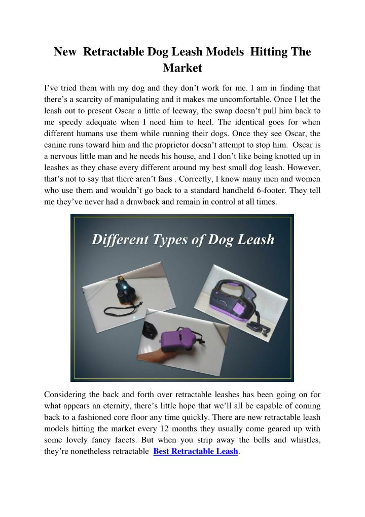 New  Retractable Dog Leash Models  Hitting The