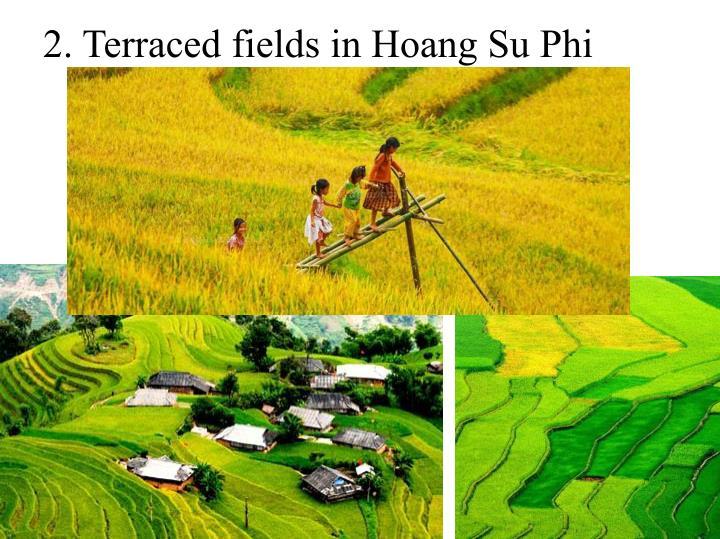 2. Terraced fields in Hoang Su Phi