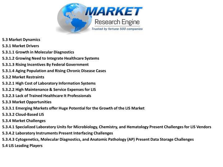 5.3 Market Dynamics