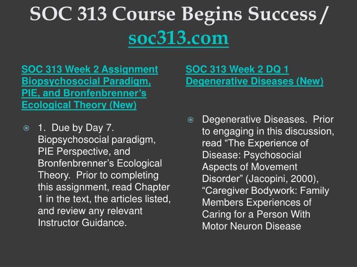 SOC 313 Course Begins Success /