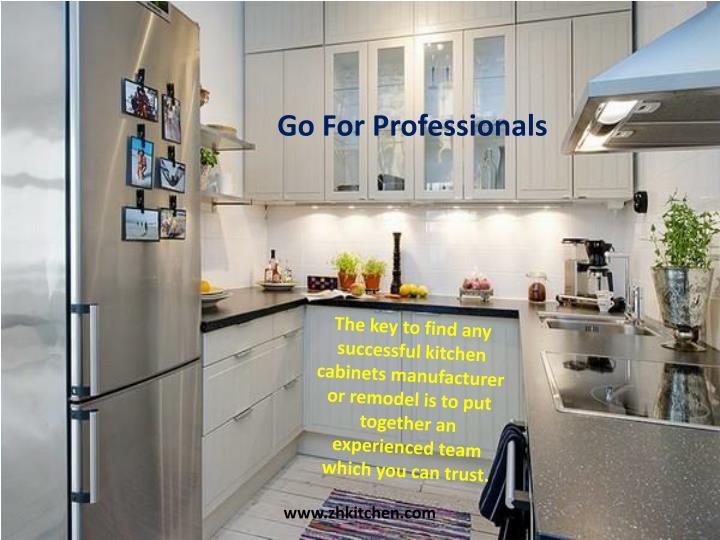 Go For Professionals