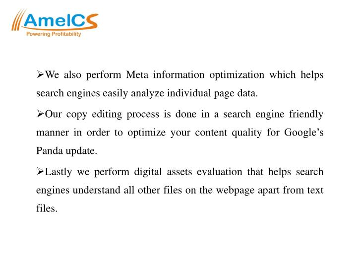 We also perform Meta information optimization which helps search engines easily analyze individual page data.