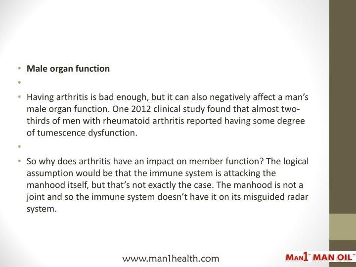 Male organ function