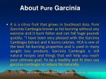 about pure garcinia