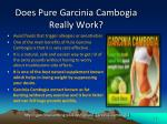 does pure garcinia cambogia really work
