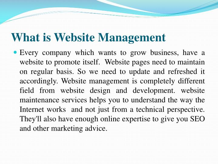 What is website management