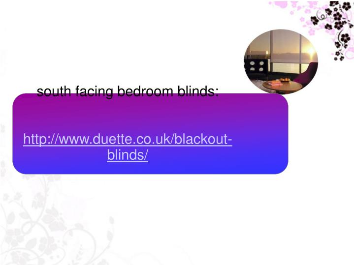 south facing bedroom blinds: