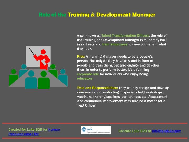 Role of the Training & Development Manager
