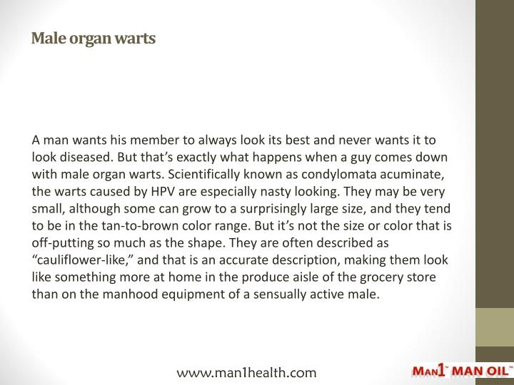 Male organ warts